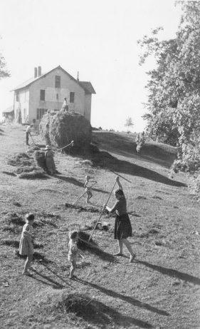 6/Fenaison été 1947 au chalet de fromagerie de Sur la Roche (mamie renée, françine, claude et gilles)